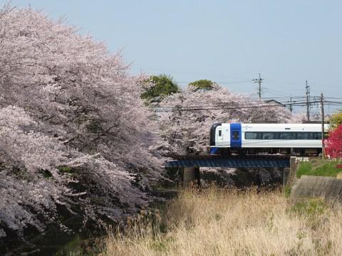 Inuyama130405.jpg