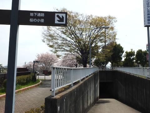 Inuyama130406.jpg